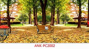 Kính ốp bếp Anh Khang ANK-PC2002